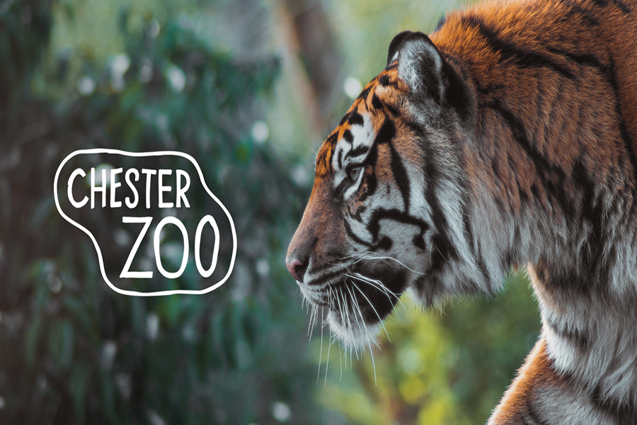 4free tickets to Chester Zoo
